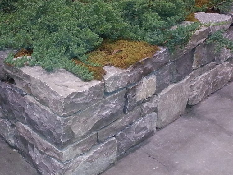 fabulous retaining wall stone step collingwood thornbury with